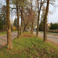 /thumbs/fit-200x200/2018-02::1518045121-ulica-sloneczna-i-ulica-dobrawy-w-pszczynie-06-11-2017-bcfe.jpg